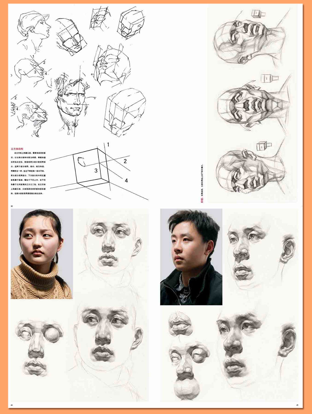 解剖素描头像_12.jpg
